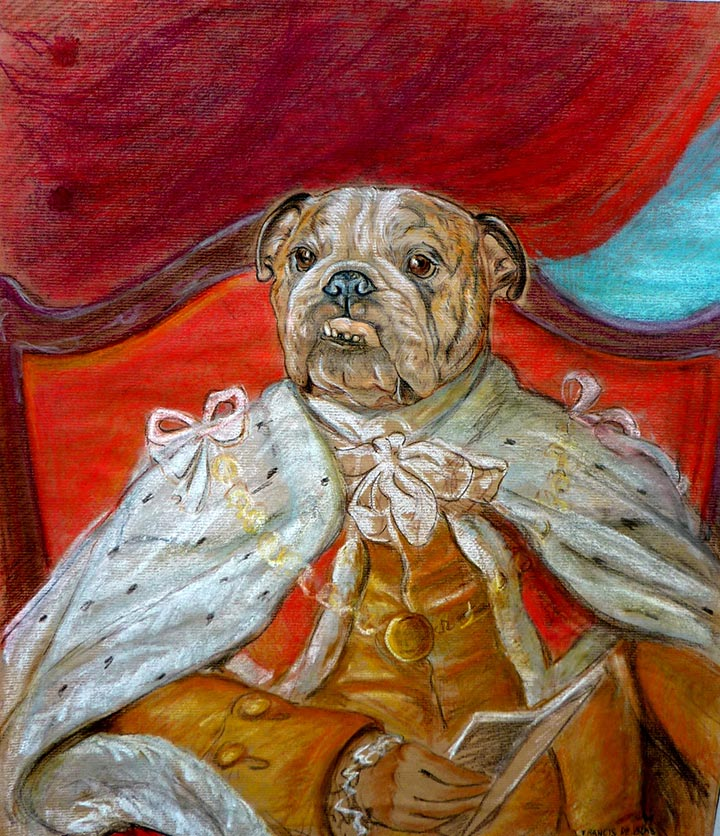 Estudio de Bulldog. Dibujo perro Utha con armiño