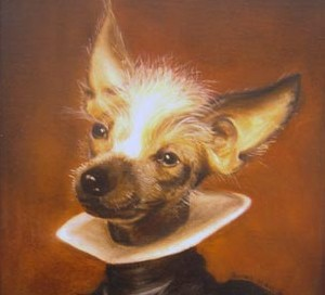 Sagun, portrait of a Chinese Crested Dog.