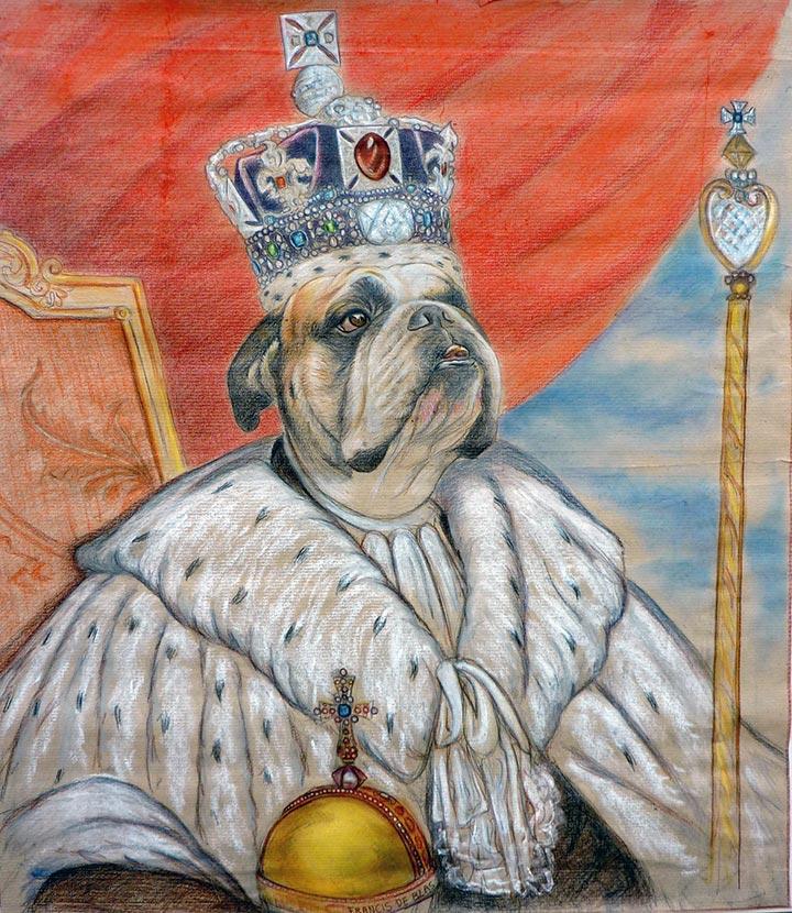Estudio de Bulldog coronado venta dibujos perro