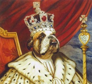 Fayet. Retrato de Bulldog inglés pintado al óleo
