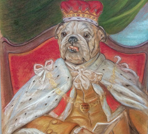 Estudio de Bulldog. Utha con armiño