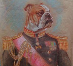Dessin de Bulldog en costume d´apparat